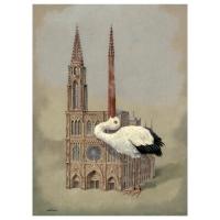 Florian Doru Crihana (RO) -  The beak