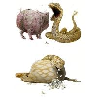 Rainer Ehrt-Piggybank snake