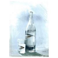 Luc Descheemaeker/O-SEKOER -  Bottle fish