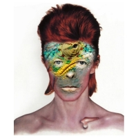 Willem Rasing - David Bowie