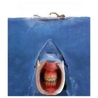 Willem Rasing - Jaws