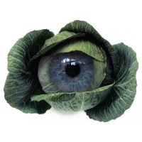 Willem Rasing - Cabbage eye