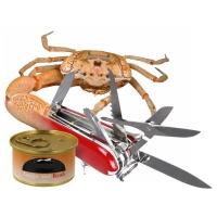 Willem Rasing - Crab