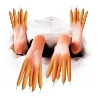 Willem Rasing - Feet basis