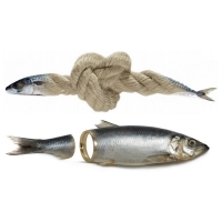 Willem Rasing - Cod herring