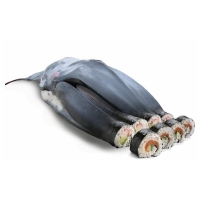 Willem Rasing - Sushi