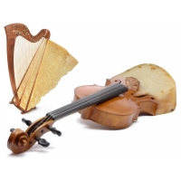 Willem Rasing - Violin cheese harp