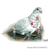Gergely Bacsa / Hungary