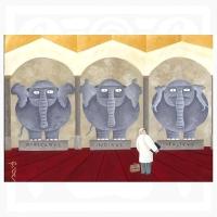 David Vela-Elephant