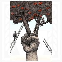 Medi Belortaja-Ovocie víťazstva