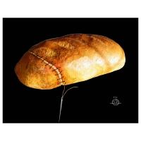 Darko Drljević - Chlieb