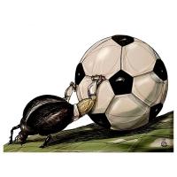 Darko Drljević -  Futbal