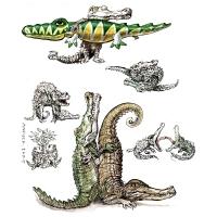 Rainer Ehrt - Krokodília láska