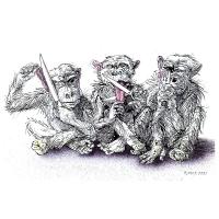 Rainer Ehrt - Tri opice