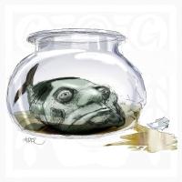 Berlusconi-ryba