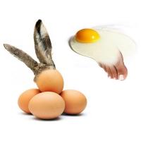 Willem Rasing - Veľkonočné vajíčka a omeleta