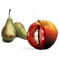 Willem Rasing - Hrušky a jablko