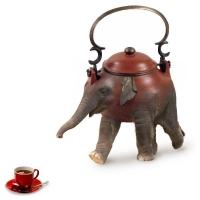 Willem Rasing - Sloní čaj