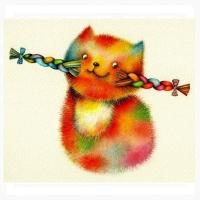 Riina Maido - Moja mačka