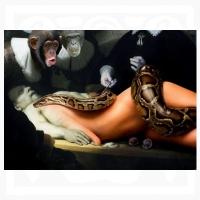 Willem Rasing - Od Adama po Evu