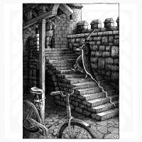 Constantin Sunnerberg-Bicykel