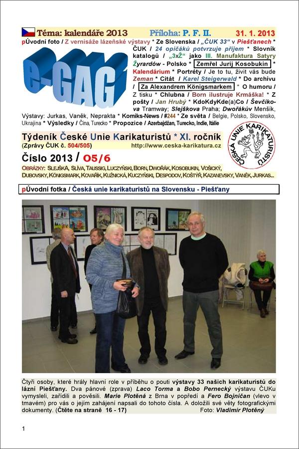 e-GAG 2013-5-6